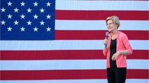 Elizabeth Warren: Plan to Educate Tech-Illiterate Congress