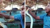 Il s'amuse à se filmer pendant qu'il joue avec un serpent qui n'est pas d'humeur