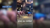 Novac Djokovic teste le sumo - Tennis - WTF