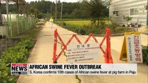 S. Korea confirms 10th cases of African swine fever at pig farm in Paju