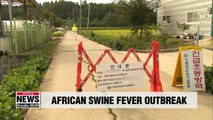 S. Korea confirms two more cases of African swine fever at pig farms in Paju