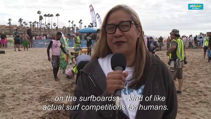 US: Surfing dog contest leaves humans 'absolutely speechless'