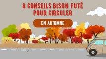 Les bons conseils de conduite en automne de Bison Futé