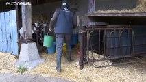 """Lubrizol : des taux de dioxines """"relativement faibles"""" selon les premières analyses"""