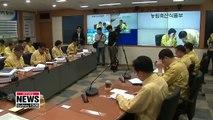 13 cases of African swine fever confirmed in S. Korea