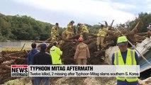 Twelve killed, 2 missing after Typhoon Mitag slams southern S. Korea
