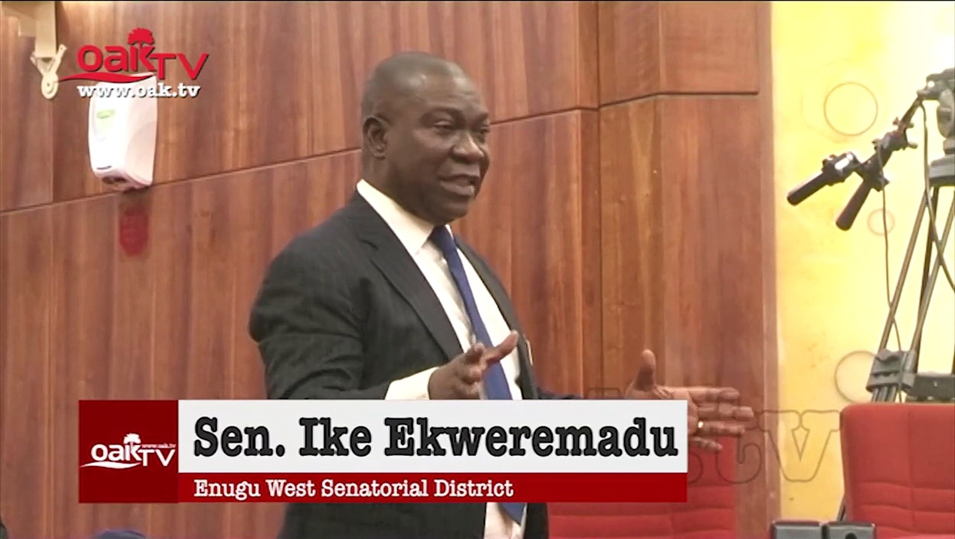Nigeria needs to admit it can't manage illegal mining - Ekweremadu