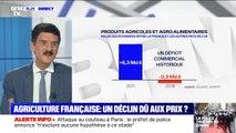 L'agriculture a longtemps été le fleuron du commerce français : comment expliquer le déclin du secteur?