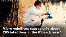 6 Things To Know About Vibrio Bacteria And 'Flesh-Eating' Disease In The US