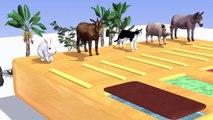 Nombres y sonidos de animales salvajes, animales de granja se transforman en animales salvajes