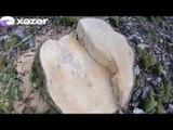 Zaqatala meşəsində ağaclar kütləvi şəkildə qırılıb
