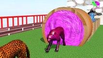 Los animales de granja y sus crías se transforman en animales salvajes y sus crías #12 parte 12