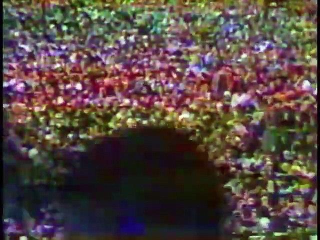 NFL 1970 NFC Championship - Dallas Cowboys @ San Francisco 49ers - full Game part 4