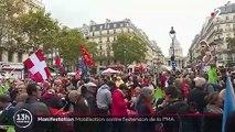 Manifestation : mobilisation à Paris contre l'extension de la PMA