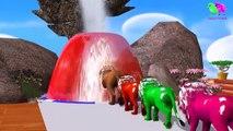 Los animales de granja y sus crías se transforman en animales salvajes y sus crías #10 parte 10