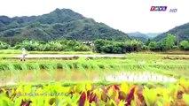 Đại Thời Đại Tập 192 - đại thời đại tập 193 - Phim Đài Loan - THVL1 Lồng Tiếng - Phim Dai Thoi Dai Tap 192