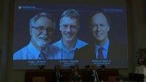 Nobel de Medicina para los estadounidenses Kaelin y Semenza y el británico Ratcliff