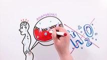 ¿QUÉ LE PASA A TU CUERPO SI NO BEBES AGUA | Drawing About