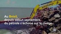 Brésil : des centaines de plages souillées par de mystérieuses nappes de pétrole
