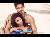 Alia Bhatt and Sidharth Malhotra To Romance In Aashiqui 3, Says Director Mohit Suri | Bollywood News