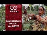Monsanto & The BT Cotton Controversy