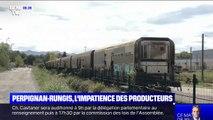 Train Perpignan-Rungis: les producteurs espèrent sa remise en route rapide