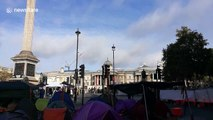 Tents set up in Trafalgar Square as Extinction Rebellion begin day two of their protests