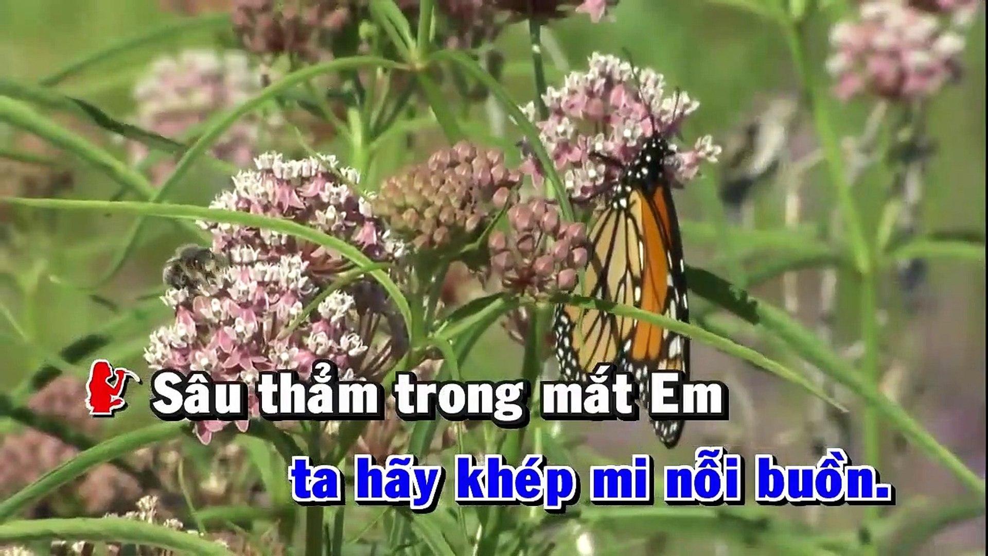 [Karaoke] Qua Đêm Nay - Hà Anh Tuấn Ft. Phương Linh [Beat]