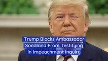 Trump Prevents Ambassador Sondland From Testifying