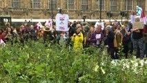 Ambiente, Extinction Rebellion pianta decine di alberi a Londra