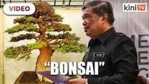 Mat Sabu respects Syed Husin, despite being called a 'bonsai'