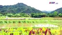 Đại Thời Đại Tập 194 - đại thời đại tập 195 - Phim Đài Loan - THVL1 Lồng Tiếng - Phim Dai Thoi Dai Tap 194
