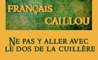 Français caillou / Définition du jour : Ne pas y aller avec  le dos de la cuillère