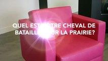 Élections - Cheval de bataille La Prairie