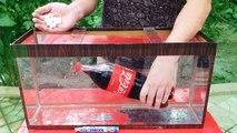 Experiment  - Coca Cola and Mentos Under Water