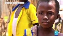 Au Ghana, le recul du paludisme