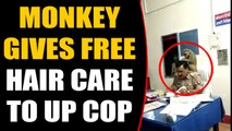 Monkey sits on UP Cop's Shoulder, gives him free hair care, video goes viral | OneIndia News