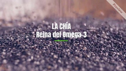 Semillas de chía, las reinas del omega-3
