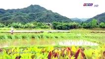 Đại Thời Đại Tập 195 - đại thời đại tập 196 - Phim Đài Loan - THVL1 Lồng Tiếng - Phim Dai Thoi Dai Tap 195