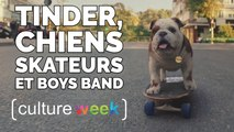 Culture Week by Culture Pub - Tinder, chiens skateurs et boys band