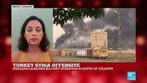 Turkey's Syria offensive: NGOs express alarm