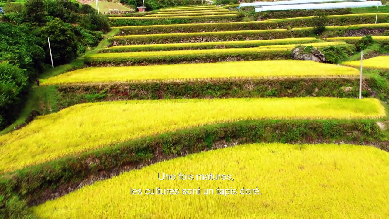 Aerial Mountains - Corée du Sud [S.1][E.1]