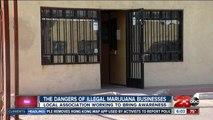 The dangers of illegal marijuana businesses in Kern County