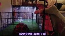 日劇 » MM9特異生物部01