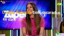 """Cristina Pedroche tiene cucarachas en casa: ¡Mira la foto! (""""¡Dios, qué horror!"""")"""