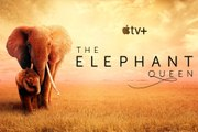 The Elephant Queen Trailer (2019) Documentary Movie