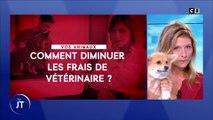 Comment diminuer les frais de vétérinaire ?
