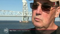 New York : les baleines à bosse réinvestissent la baie