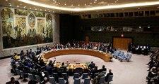 Rusya, BMGK'nın Türkiye'ye Barış Pınarı Harekatı'nı durdurması çağrısı yapmasına izin vermedi