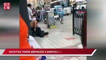 Terör şüphelisi 5 Suriyeliye gözaltı